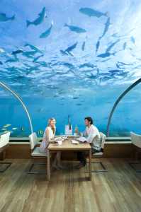 Conrad Maldives_Ithaa Undersea Restaurant (5)